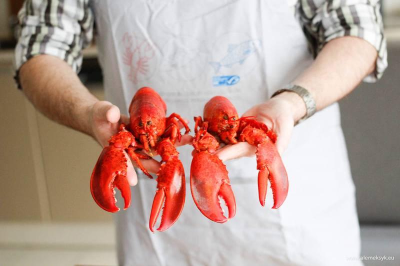 Mały poradnik jak przygotować, ugotować, obrać i jeść homara?