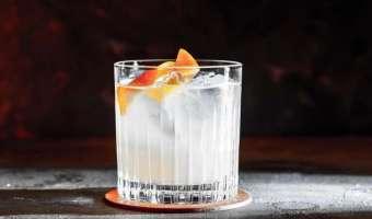Shrub żurawiowy i gin - Drink cranberry martini smakujący lasem
