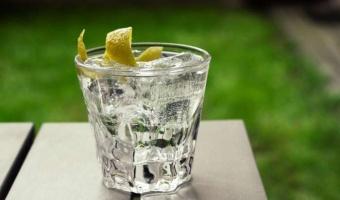 Dwa składniki letniego orzeźwienia - wódka limonkowa z tonikiem